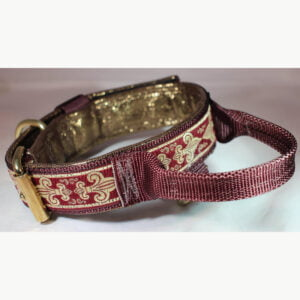 1. Collar with handle
